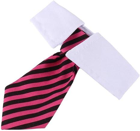 Qiterr Cuello de Corbata de Lazo Lindo con Cuello Ajustable Cuello ...
