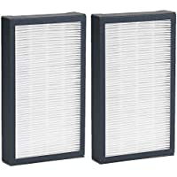 Germguardian HEPA Replacement Filter E; For Model AC4100 (2 pk.)