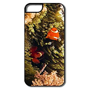 Personalize Funny ECO Beautiful Clown Fish IPhone 5/5s Case For Family