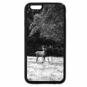 iPhone 6S Case, iPhone 6 Case (Black & White) - Roaring Deer