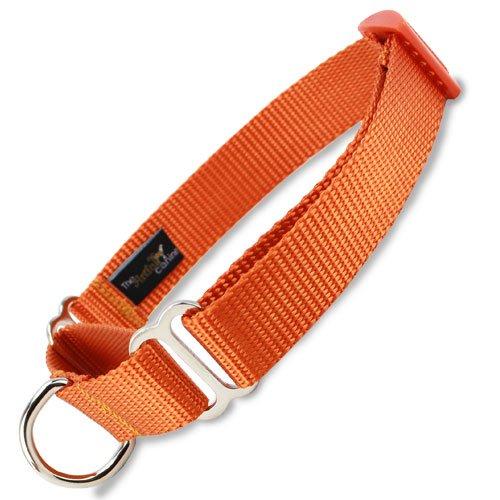 Martingale Dog Collar, Nylon, Orange, X-Small, Small, Medium, Large, X-Large