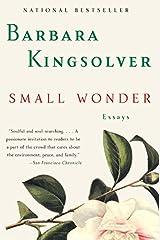 Small Wonder: Essays Paperback
