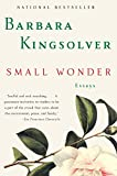 Small Wonder: Essays