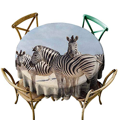 crabee Decor Collection Table ClothsWildlife,Three Zebras in Namibia National Park Africa Savannah Safari Theme,Light Blue Black Beige,Round Tablecloth