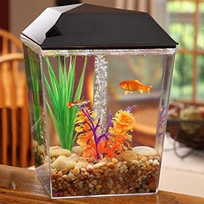 Aqua Culture One Gallon Aquarium Starter Kit with LED Light & Filter System