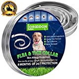 Best Flea Collar For Dogs - LorddDon⭐⭐⭐⭐⭐ Flea and Tick Prevention Collar One Size Review
