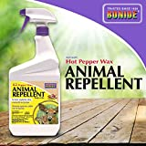 BONIDE PRODUCTS INC 127 037321001270 Ready to Use Hot Pepper Wax, 32 oz, Animal Repellent