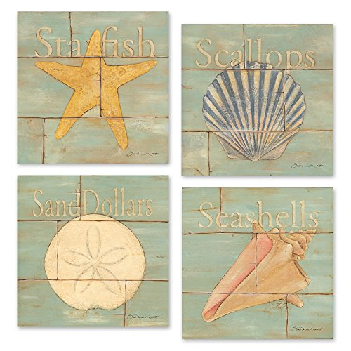 Four-12x12-Inch-Starfish-Scallop-Sand-Dollar-Seashells-Rustic-Dcor-posters-on-Paper