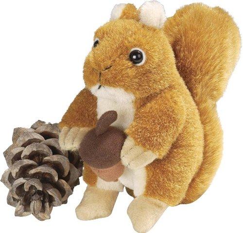 Red Squirrel Sound Wild Repub product image
