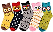 LUOEM 5 Pairs of Soft Comfortable Girl's Cute Owl Pattern Cotton S