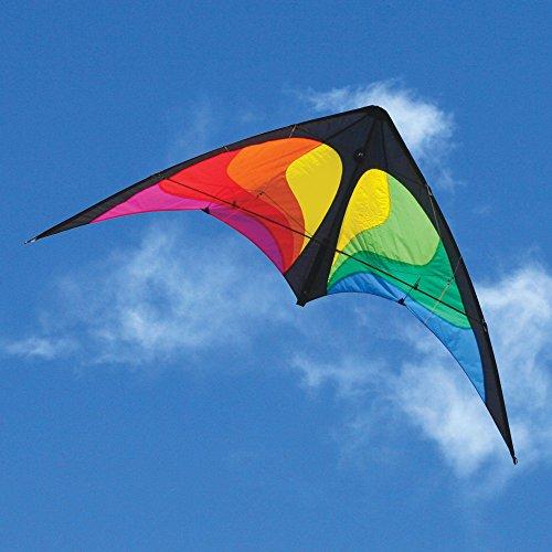 HQ Yukon Series Beach and Fun Sport Kite (Rainbow) by HQ Kites and Designs