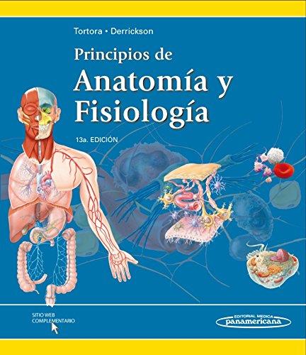 Principios De Anatomía Y Fisiología - 13ª Edición: Amazon.es: Gerard ...