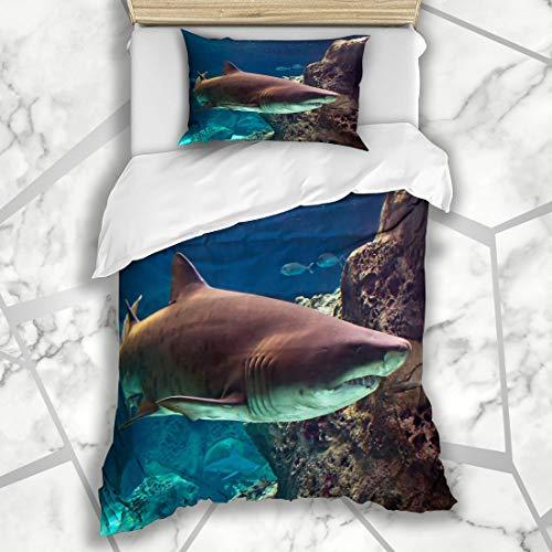 Ahawoso Duvet Cover Sets Twin 68X86 Lights Blue Fish Shark Underwater Natural Aquarium Wildlife Nature Great White Reef Gills Attack Microfiber Bedding with 1 Pillow - Reef Aquarium Natural Micro