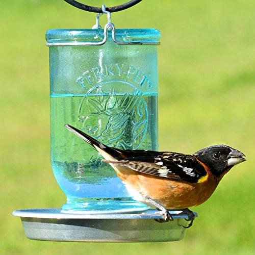 Perky-Pet Mason Jar Wild Bird Waterer 783, Blue
