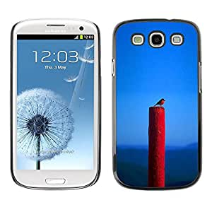 All Phone Most Case / Hard PC Metal piece Shell Slim Cover Protective Case Carcasa Funda Caso de protección para Samsung Galaxy S3 I9300 Spring Nature Bird Blue Red Robin