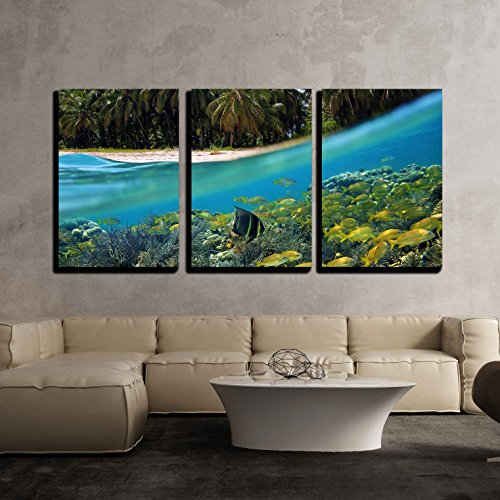 wall26 - 3 Piece Canvas Wall Art - Surface and Underwater View with Beach, Coconuts Trees and School of Fish in Coral, Panama - Modern Home Decor Stretched and Framed Ready to Hang - 16