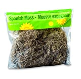 FloraCraft Spanish Moss 8 Ounce Natural