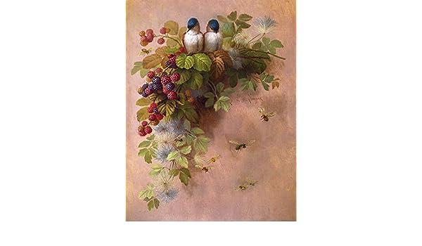 Bees /& Berries by Paul De Longpre Art Print of Vintage Art Bird