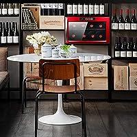 XUNMAIFWC Nevera para Vinos, Nevera de Bebidas con Compresor,para ...