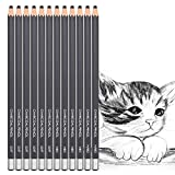 12pcs Charcoal Drawing Pencils Set Sketch Pencils Soft Medium Hard Ideal for Drawing Art, Sketching, Shading, Artist Pencils for Beginners & Pro Artists
