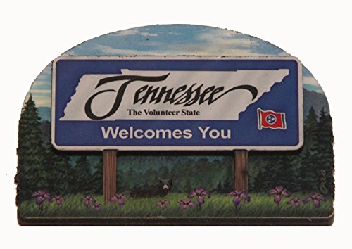 The 8 best tennessee items