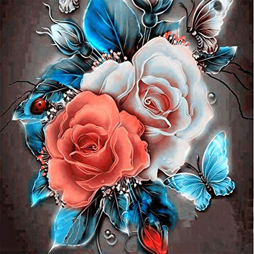 5D Embroidery DIY Paintings,Woaills Rhinestone Pasted Diamond Painting Cross Stitch (30x30cm) (Multicolor)