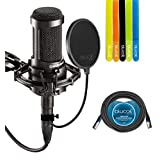 Audio-Technica AT2035 Large Diaphragm Studio Cardoid Condenser Microphone Bundle - INCLUDES Shock Mount, Blucoil Pop Filter, Blucoil 20 Ft XLR Cable AND 5 Pack Cable Straps