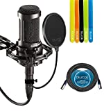 Audio-Technica AT2035 Large Diaphragm Studio Cardoid Condenser Microphone Bundle with Shock Mount, Blucoil Pop Filter, 20 Ft XLR Cable AND 5 Pack Cable Straps
