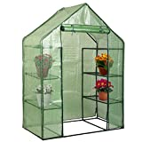 KJ Home Portable Mini 8 Shelves Walk In Greenhouse 4 Tier Green House Gardening Flower Plants Outdoor Yard Mini Hot Green House