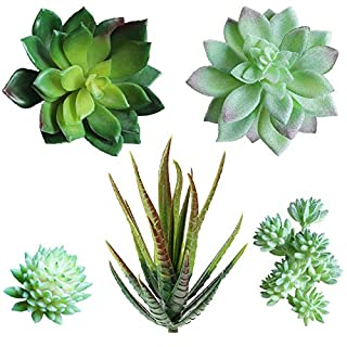 "Supla Pack of 5 Assorted Artificial Echeveria Succulent Picks in Flocked Green and Green 4""-1.3"" Wide for Floral Arrangement Christmas Accents"