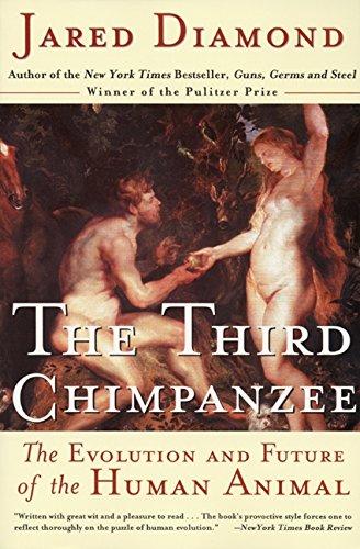 third-chimpanzee-the