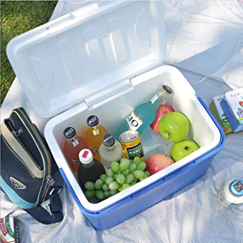 KANGYANLONG Car Refrigerator 13L Incubator Heating and Cooling Box car Home Mini Refrigerator Outdoor Products (Outdoor Powersports)