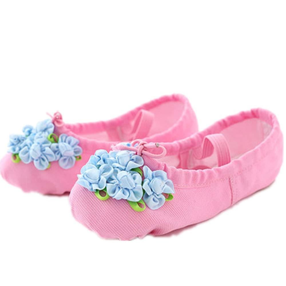 Size 33 Shoe In Us.Amazon Com Kids Classic Ballerina Ballet Flat Shoes Pink 3