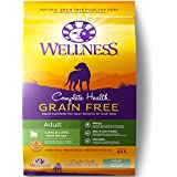 Wellness Complete Health Natural Grain Free Dry Dog Food, Lamb, 12-Pound Bag