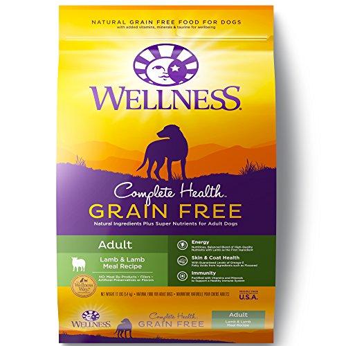 Wellness Complete Health Natural Grain Free Dry Dog Food, Lamb, 12-Pound Bag