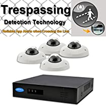 OwlTech 8 Channel Trespassing Detection NVR up to 5MP Resolution + 4 x 720P 1.3MP 3.6mm Hotel Style IP Dome Camera (NO LED) WDR + POE + 2TB HDD + 100ft cable and accessories