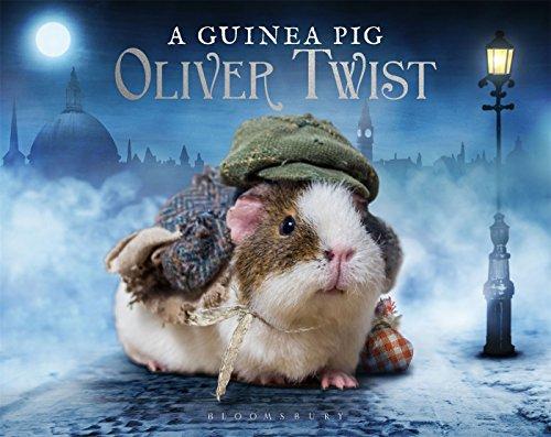 A Guinea Pig Oliver Twist (Guinea Pig