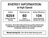 Westinghouse Lighting 7840900 Industrial 56-Inch