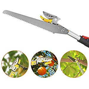 Belpink Long Tree Pruner With Pole Saw | Telescopic Long Reach Fruit Picker 5-13 Feet| Handled Garden bypass Tree Lopper