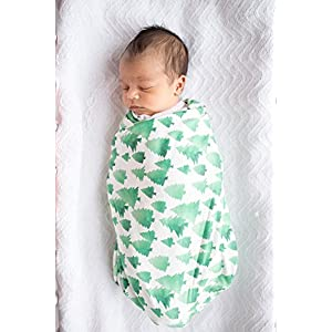 """Large Premium Knit Baby Swaddle Receiving Blanket Green and White Trees""""Forest"""" by Copper Pearl"""