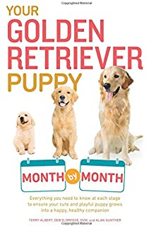 Golden retriever puppy training books