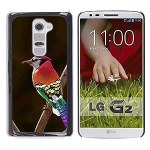 Cubierta protectora del caso de Shell Plástico || LG G2 D800 D802 D802TA D803 VS980 LS980 || Green Red Beak Branch Brown @XPTECH