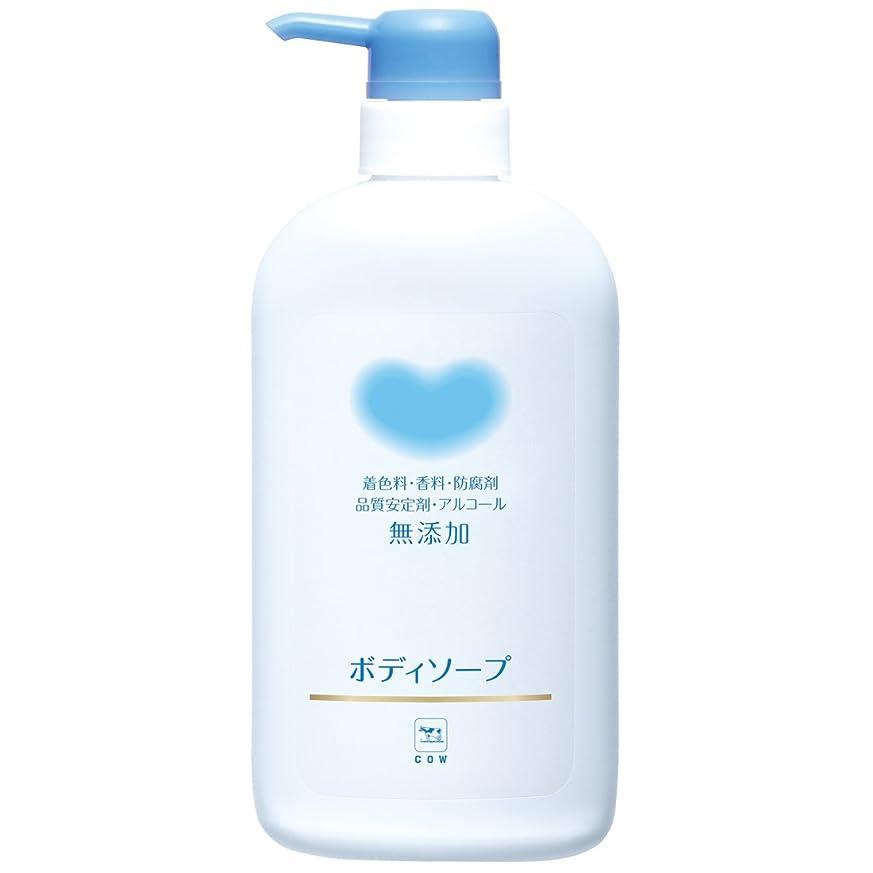 神経驚くべき公平なREDEN BODY SOAP(リデン ボディーソープ)500ml