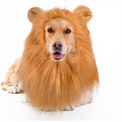 Yosmi Lion Mane Costume for Dog Adjustable size Clearly synthetic fibers Perfect fasten around dog head Lion Wig for Dog Retriever Mastiff Halloween lion costume