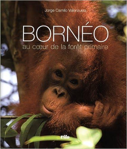 Livres gratuits en ligne Bornéo : Au coeur de la forêt primaire (1CD audio) epub pdf