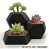 Modern Geometric Ceramic Succulent Cactus Planter Pot (Set of 3) with Black Matte Finish