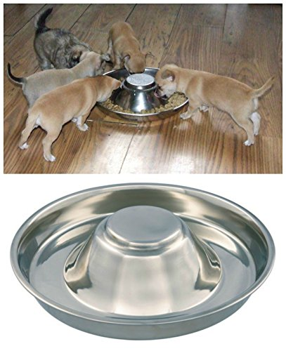 Kabalo Stainless Steel Puppy,Cat, Dog, Pet, Litter Food Feeding & Weaning Feeder Bowl
