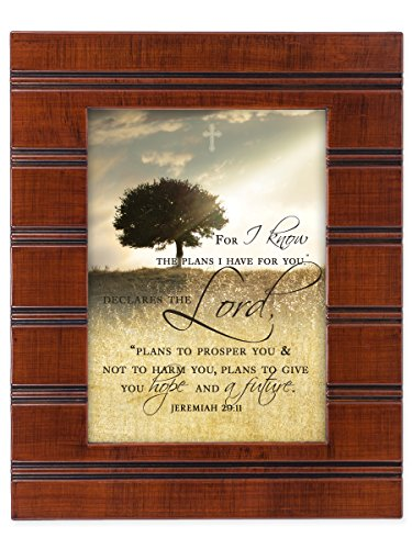 For I know the Plans I Have For You Jeremiah 29:11 Wood Finish 8 x 10 Sentimental Framed Art Plaque ()