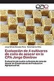 img - for Evaluaci??n de 4 cultivares de ca??a de az??car en la CPA Jorge Dimitrov by Gonz??lez P??rez Jorge Alfredo (2015-06-25) book / textbook / text book