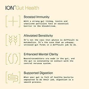 ION*Gut Health | Promotes Digestive Wellness, Strengthens Immune Function, Alleviates Gluten Sensitivity, Enhances Mental Clarity | 2-Month Supply (32 oz.)